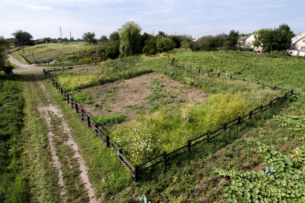 Колишнє місце розстрілу і сьогоднішнє пам'ятне місце знаходяться зовсім неподалік села, липень 2015